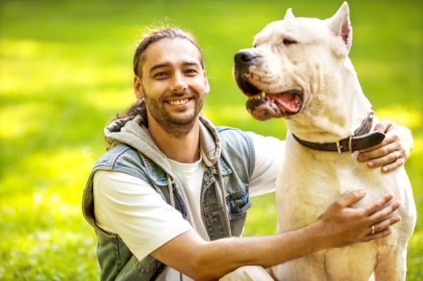 15 erreurs lors de la formation d'un chien - 14. Ne pas continuer la formation